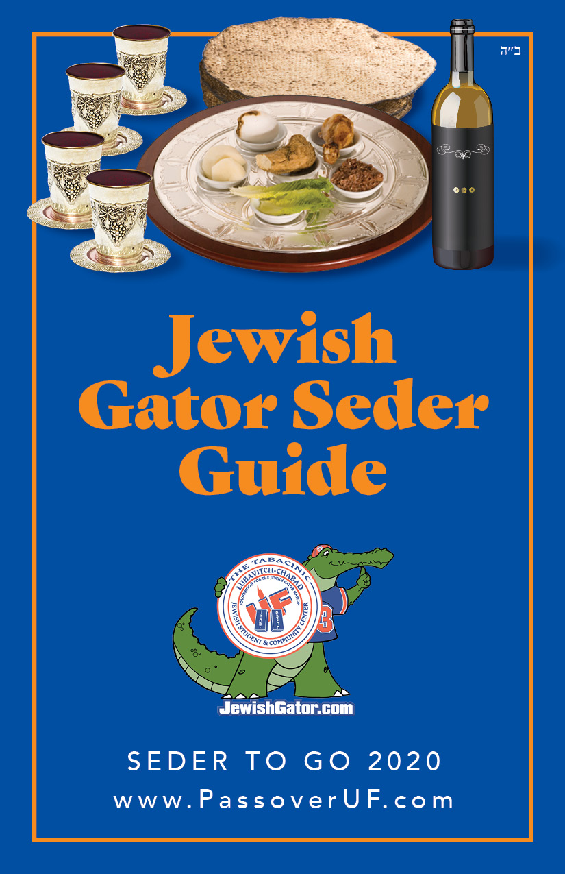 Passover Seder's